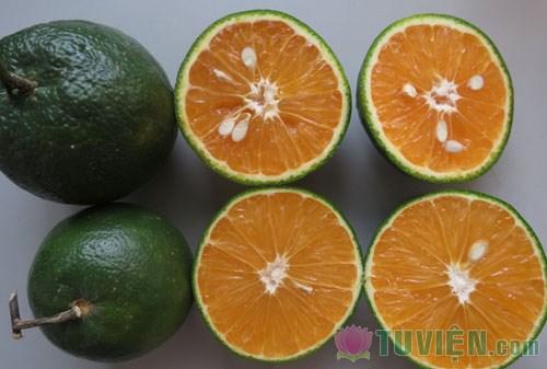 Vitamin C có thể giảm nguy cơ đột quỵ