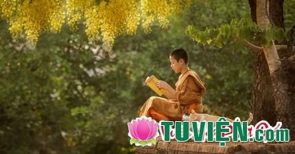 17 câu nói đáng giá ngàn vàng giúp bạn bình an