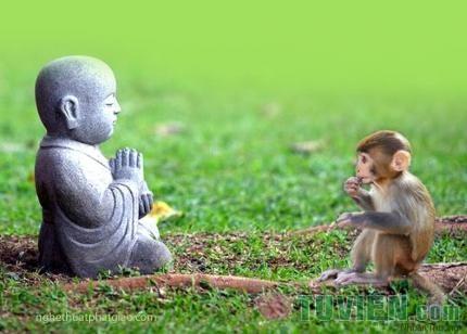 Niệm Phật sự lý viên dung tất được giải thoát