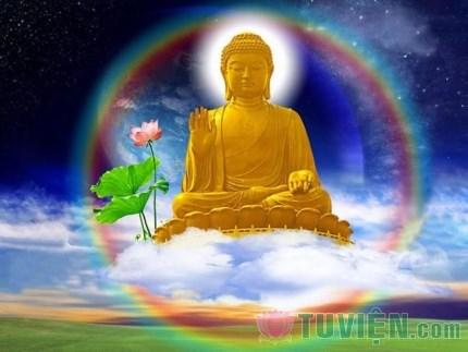 66 câu Phật học để ngộ ra chân lý cuộc đời