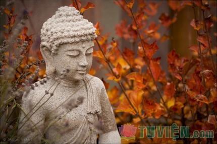 Áp dụng quyền bình đẳng giới như Đức Phật Thích Ca đã làm cho nền Phật học ngày nay