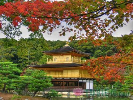 Chùa vàng Kinkakuji nổi tiếng ở Nhật Bản