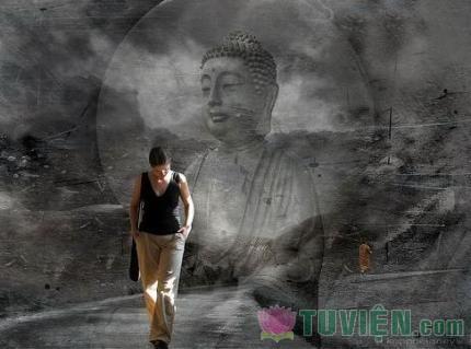 Phật tử trên bước đường tìm cầu chân lý