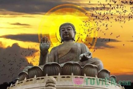 Cuộc đời của Đức Phật là bài học để chúng ta phải học tập và noi theo