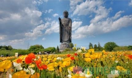 Chiêm ngưỡng Đại tượng Phật A Di Đà Japan một trong những pho tượng lớn nhất thế giới