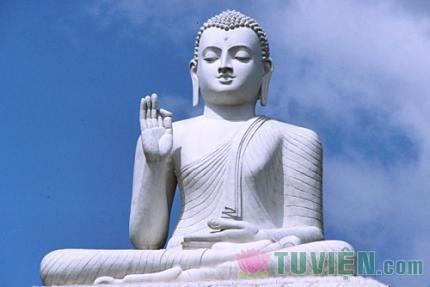 Đạo Phật và Hòa bình
