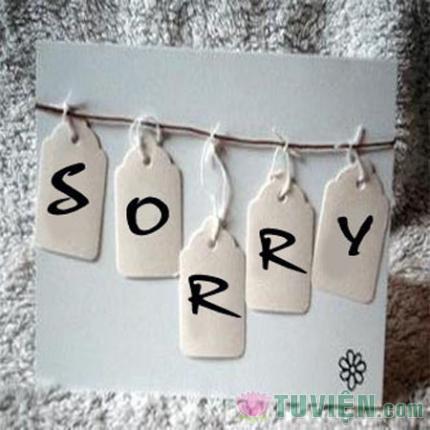 Đơn giản chỉ là một câu xin lỗi