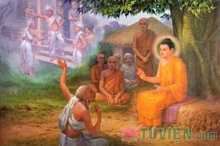 Đức Phật đã xử sự như thế nào khi chứng kiến cả dòng họ bị giết hại?