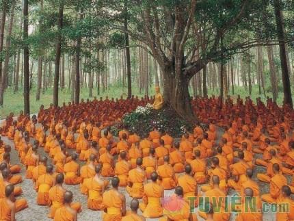 Đức Phật thuyết pháp bằng ngôn ngữ gì?