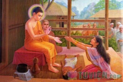 Suy ngẫm về câu chuyện Đức Phật và Hạt cải