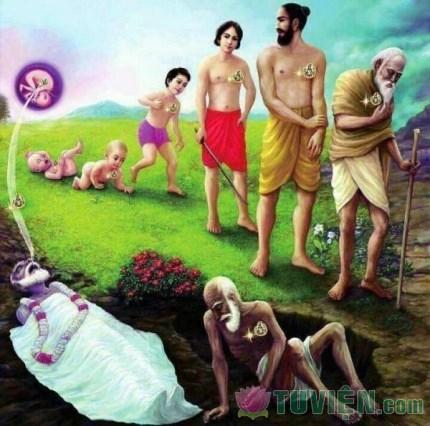 Vì sao Phật ra đời giữa thế gian này?