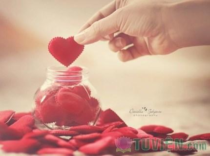Gieo yêu thương - Gặt yêu thương