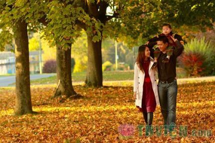 Phần I. Hạnh phúc gia đình