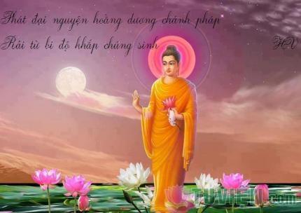 Cái hiểu về Phật giáo của một số nhà tri thức hiện nay