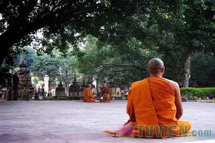 Áp dụng lời Phật dạy trong vấn đề khủng hoảng kinh tế