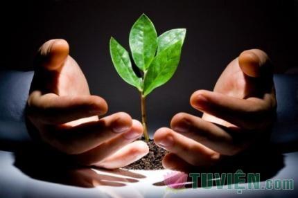 Tấm Lòng Rộng Mở - Luyện tập lòng từ bi trong đời sống hằng ngày - Phần 09: Chương 7: Lòng từ bi