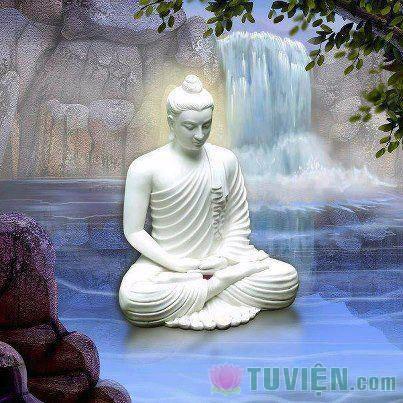 Nguyên lý hòa bình trong Phật giáo Đại thừa
