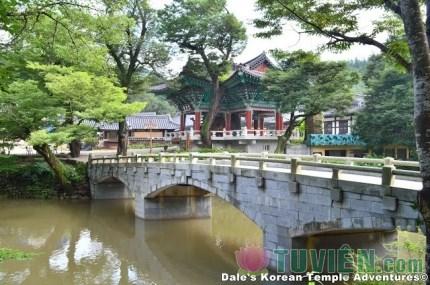 Phật Giáo Nhật Bản - Phần 6