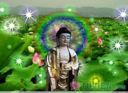 Niệm Phật Một Tháng Phật Di Đà cho biết vãng sanh