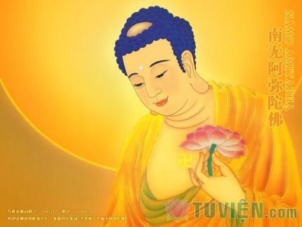Pháp môn niệm Phật trong kinh A Di Đà