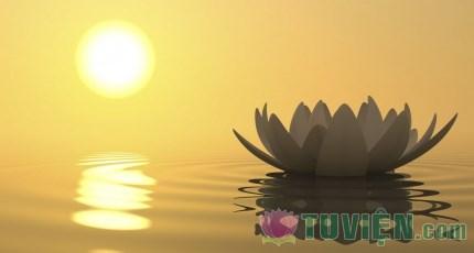 Làm theo 10 hạnh lành Phật dạy để được hạnh phúc