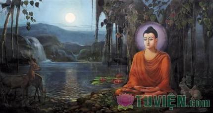 Phật pháp là thuốc trị tâm bệnh cho chúng sanh