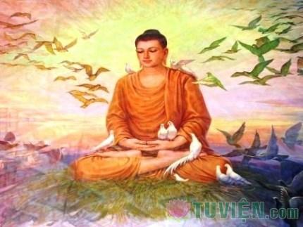 Suy nghiệm lời Phật: Luyến ái buộc ràng