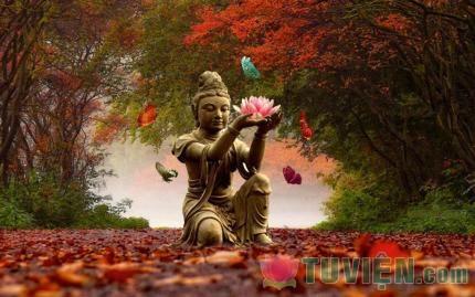 Tấm Lòng Rộng Mở - Luyện tập lòng từ bi trong đời sống hằng ngày - Phần 05: Chương 3: Thế giới vật chất và phi vật chất