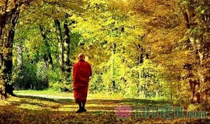 Lời Phật dạy về tám nạn chẳng được tu hành Phạm hạnh