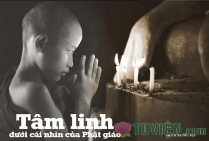 Tâm linh dưới cái nhìn của Phật giáo