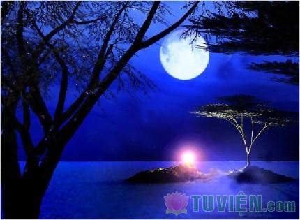 Tặng một vầng trăng