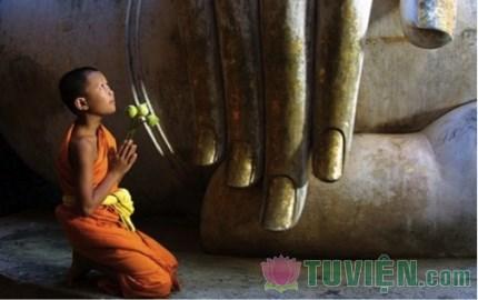 Xin đừng ca ngợi đức Phật mà quên đi giáo Pháp Ngài đã giác ngộ