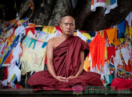 Những khác biệt giữa Thiền và Yoga