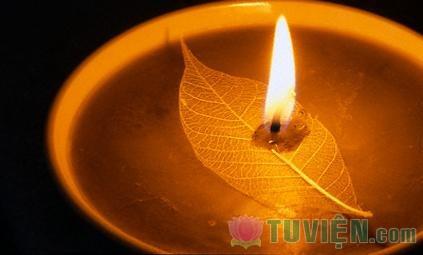 Chùm thơ Tỉnh Thức của Phật tử Thanh Bình