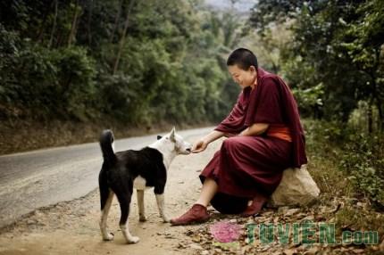 Từ thiện theo quan điểm nhà Phật