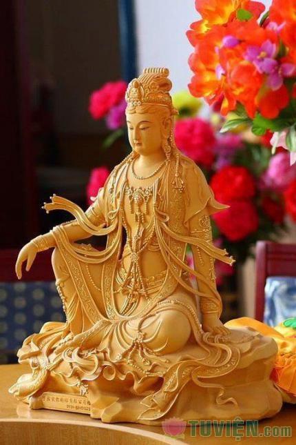 Vài ý nghĩ nhỏ về đức dũng của người Phật tử