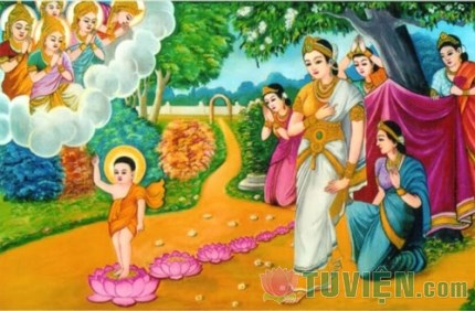 Ý nghĩa 7 bước chân của Đức Phật Thích Ca